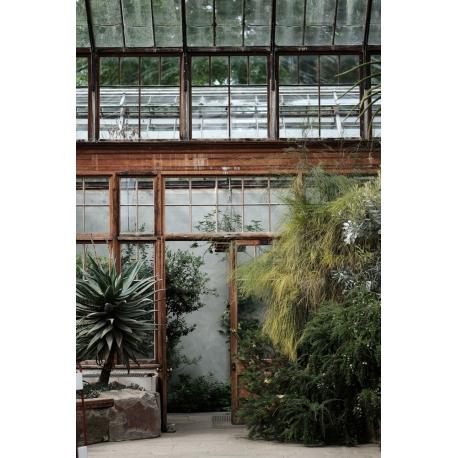 Tableau Arboretum