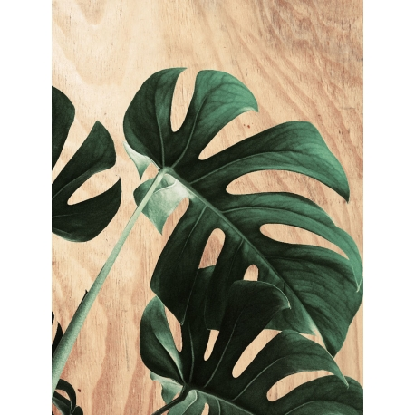 Tableau Monstera